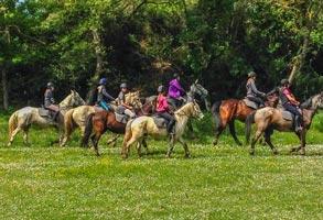 Camping Carcassonne équitation