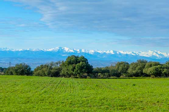 location camping martinet carcassonne