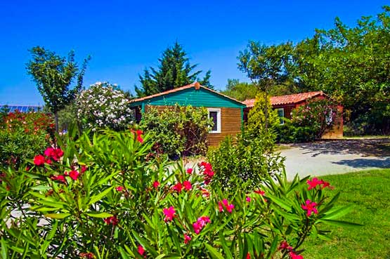 location camping ombre des oliviers carcassonne