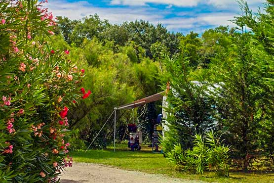 location emplacement camping ombre des oliviers carcssonne